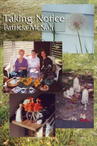 Taking Notice - Patricia McNair
