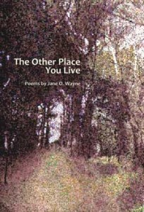 The Other Place You Live - Jane O. Wayne