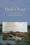 Under Foot by Stephen Lewandowski - front cover - small