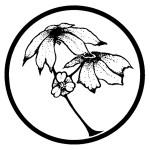 Tablecloth Logo