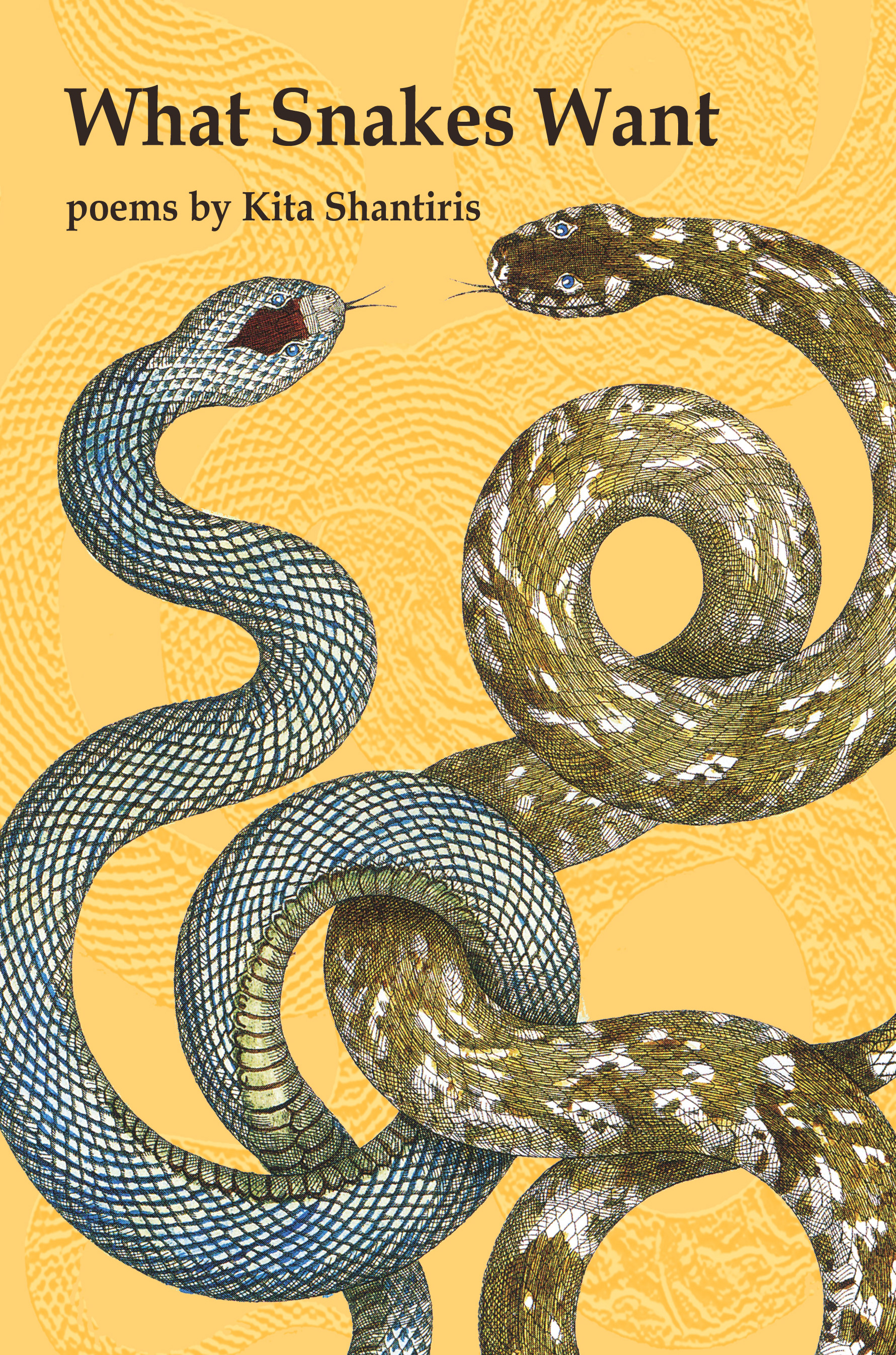 What Snakes Want – Kita Shantiris