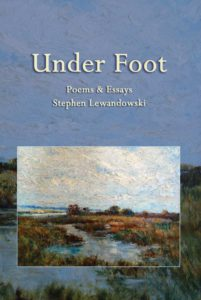 Under Foot by Stephen Lewandowski