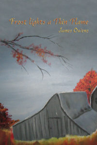 Frost Lights a Thin Flame - James Owens